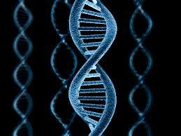 DNA_1