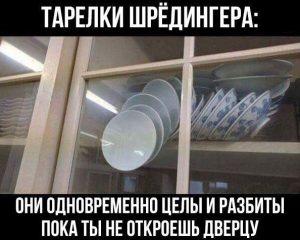 shredinger